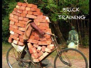 brick training
